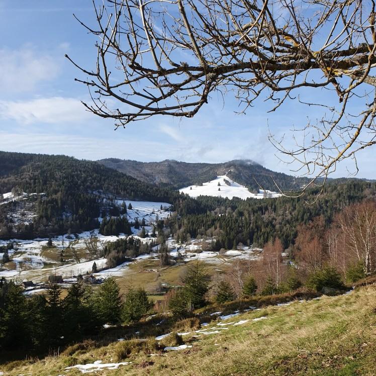 Albhof im Hochschwarzwald
